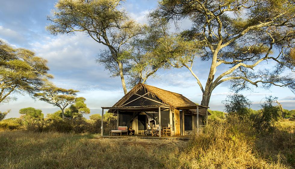 The Best Small Safari Camps in Tanzania
