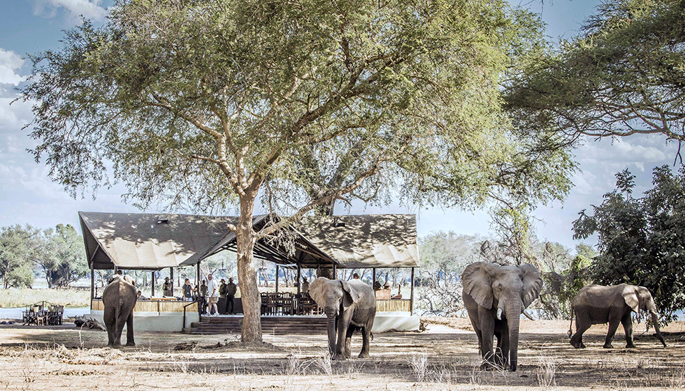 For the love of Zambia's bushcamps